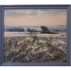 Obrázek Zima v polích